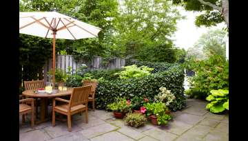Wonderful Garden Designs