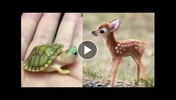 Cute baby animals Videos Compilation cute moment of the animals