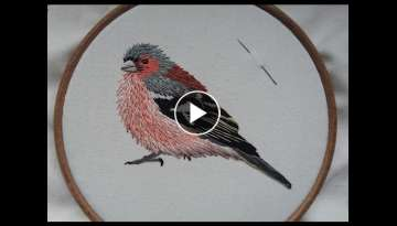 2. Hand Embroidery. Chaffinch. Stitching a Bird by Craft Jitsu Online Class
