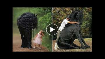 Horse SOO Cute! Cute And funny horse Videos Compilation cute moment