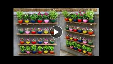 Recycle Plastic Bottles into Beautiful Hanging Garden On Old Wall | Portulaca Hanging Garden